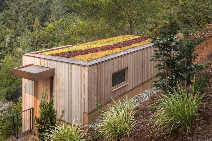 Living roof on guesthouse