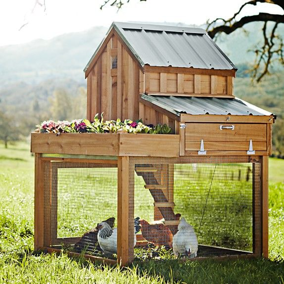 Williams Sonoma Cedar Chicken Coop U0026 Run With Planter