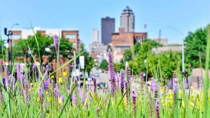 Jardin urbain à Des Moines, IA