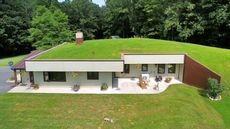 Grass-Roofed Retreat in West Virginia for Sale—Lawn Mower Required