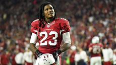 Cardinals Running Back Chris Johnson Selling Tennessee Home for $1.12M