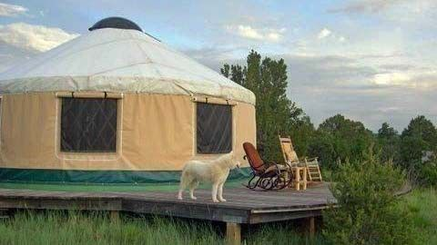 Yurt Homes Are Having A Moment Check Out 7 Of The Tiny Homes