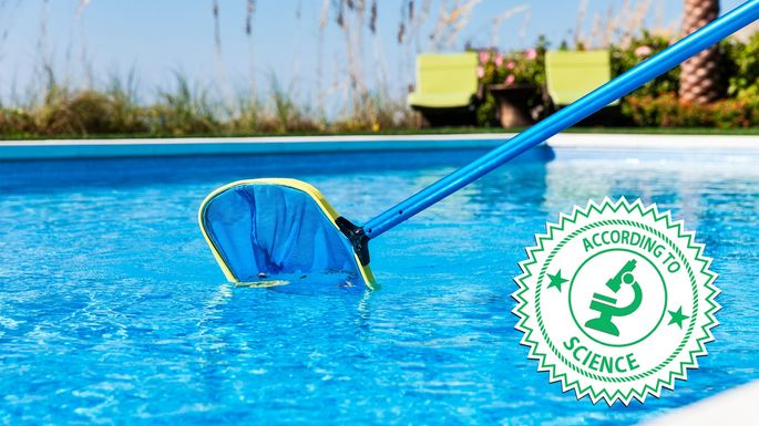 How to Clean a Swimming Pool—and What Happens If You Don\'t ...