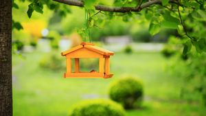 8 Outdoor DIY Projects That'll Add Serious Charm to Your Yard This Summer