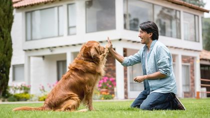From Reality TV to Real Life: How a Dog Can Save a Deal, and More