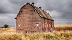 Thieves Plunder Barns for Precious Loot: Farmhouse-Chic Wood