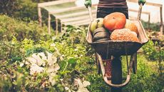 What Is a 'Gentleman's Farm'? A Gardener's Paradise, With One Catch