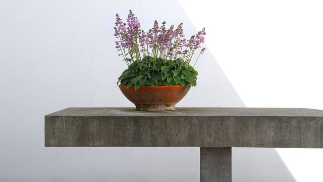 A Solid Choice! You'll Want These Concrete Accessories in Every Room of Your Home