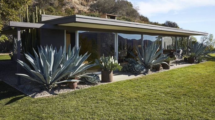 Popular Midcentury Modern Homes Are Fetching Top Dollar   realtor.com®