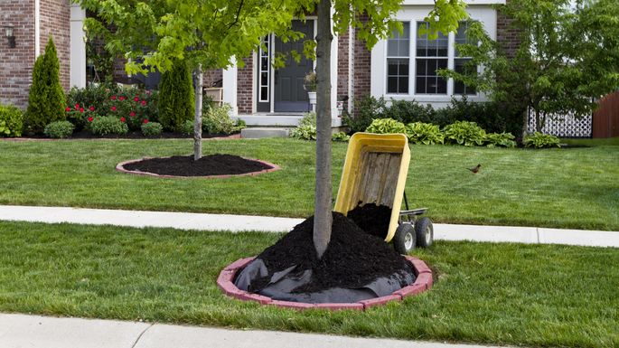 Note to self: There really is a right and wrong way to mulch.