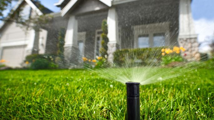 how-to-water-lawn