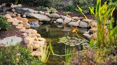 How to Build a Pond in Your Yard (It's Not as Easy as Just Digging a Hole)