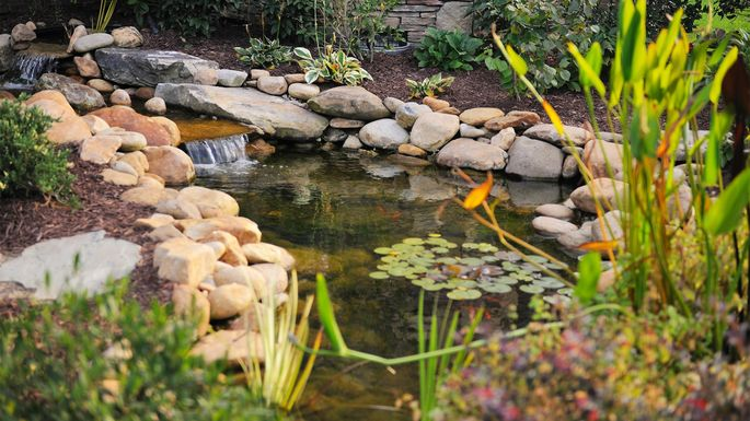 backyard-pond - How To Build A Pond In Your Own Yard Realtor.com®