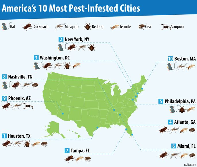 Image result for worst pests by region map