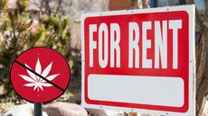 Just Because It's Legal Doesn't Mean Tenants Can Smoke It