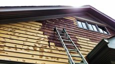 Does Your Home Have Lead Paint? How to Find Out