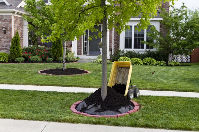 Don T Stop There Flatten Loosely Your Mulch To Avoid A