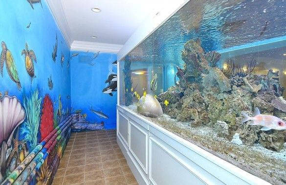 Sunday sports page daunte culpepper loses mansion to for Small sharks for fish tanks