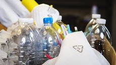 Can You Recycle That? Here's What the Recycling Numbers on Plastic Mean