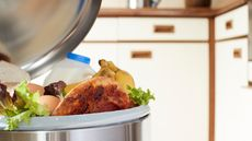 Where Does the Trash Go? And 8 Other Things Everyone Forgets When Renovating Kitchens