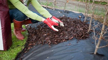How to Use Landscape Fabric: Lawn Maintenance Made Lazy