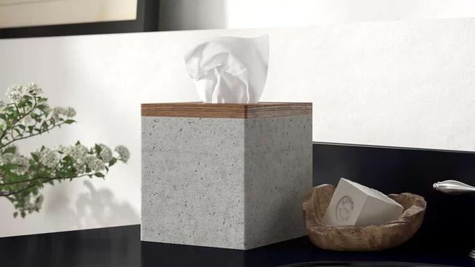 Concrete tissue box
