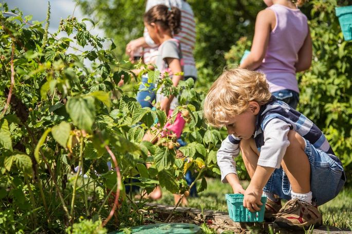 Children can volunteer to work on the farm at Willowsford Virginia.