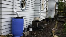 Rain Barrels: The Money-Saving, Eco-Friendly DIY Project Your Garden Needs
