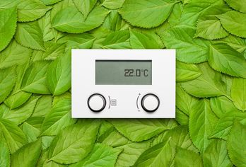 5 Simple Ways to Green Your Apartment
