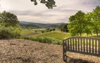 Homes on the Vine: Five Winery Estates You Can Buy Right Now (PHOTOS)
