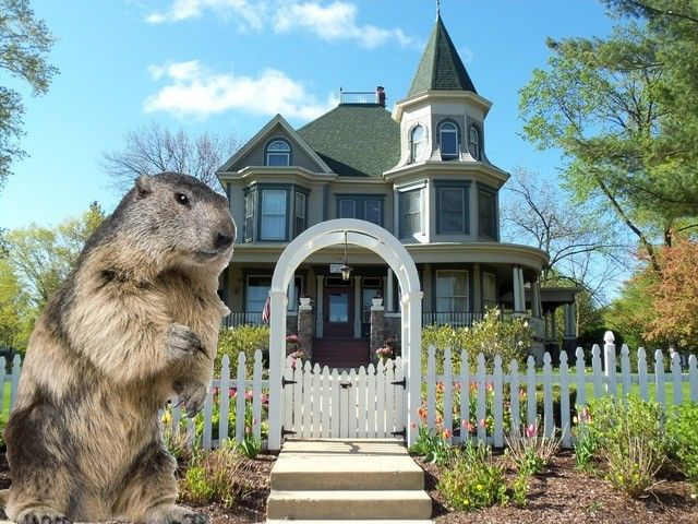 groundhog-day-bed-and-breakfast-movie-0