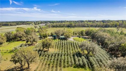 Can a Buyer Extract Delicious Value From This $11.9M Olive Farm in Florida?