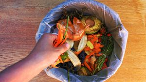 Don't Toss It! 10 Surprising Things You Can Compost (and 3 You Really Shouldn't)