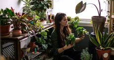 Love Plants? Then This DIY Garden Room Is for You—Here's How To Create It