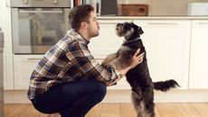 The Pet Lover's Guide to Buying a Home: 6 Things You Might Miss