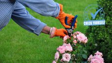 7 Summer Maintenance Musts: Your Essential Seasonal Checklist