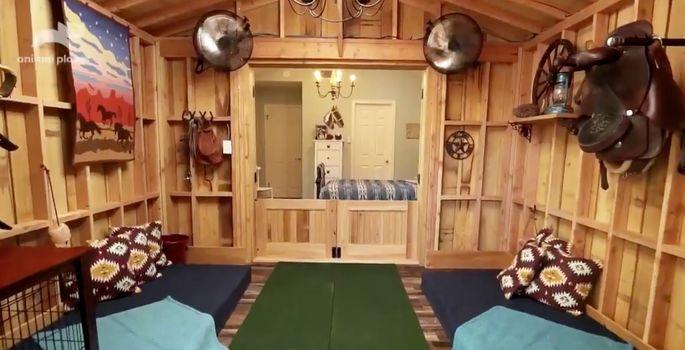 Horse bedroom