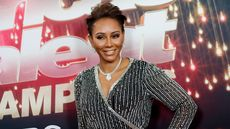 Why Hasn't Anyone Bought Mel B's Hollywood Hills Home?