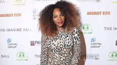Serena Williams Slices Price on Bel Air Mansion—So What Happened?