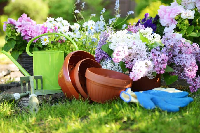 You don't have to dig deep in your wallet for this garden gear.