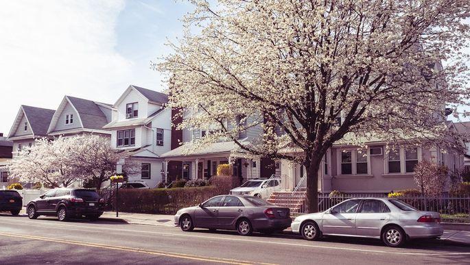 Springtime Brooklyn Street and Houses