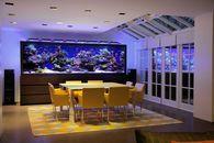 The $1 Million Aquarium: Customized Fish Tanks as Home Decor