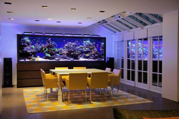 The 1 Million Aquarium Customized Fish Tanks As Home