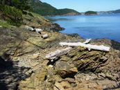 Billionaire Paul Allen Selling Private Island For $13.5M