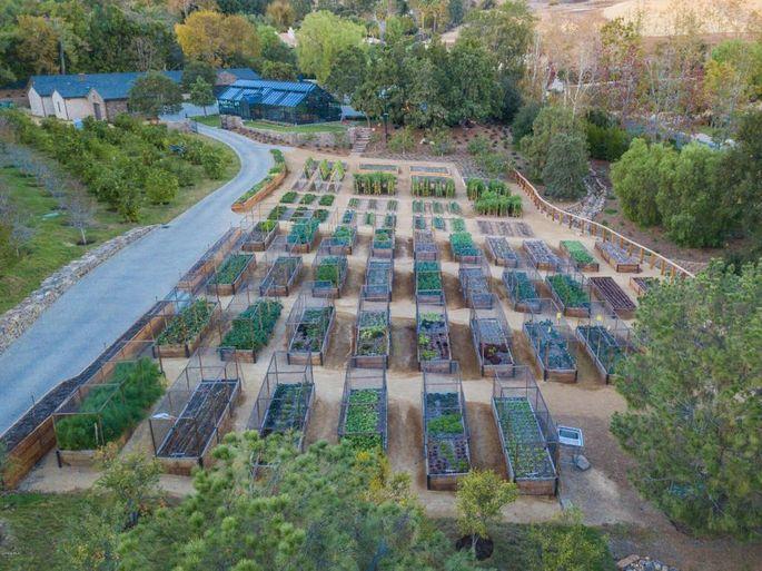 Five-acre organic farm