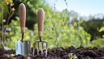How to Clean Garden Tools (and Why They Need It So Bad)