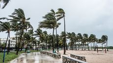 Hurricane Preparedness for Homeowners: 5 Things You Won't Regret Checking Right Now