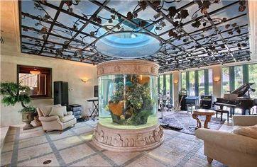 7 Shark Tanks to Swim Through
