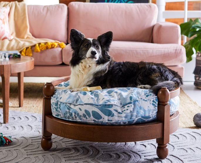 This bed is sized for small or medium pets up to 75 pounds.