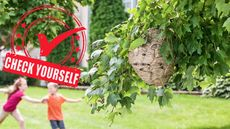 Check Yourself: 6 Home Maintenance Tasks You Should Tackle in August
